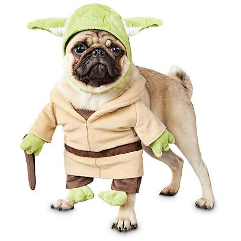 5 Best Star Wars Costumes For Pets May The Force Be