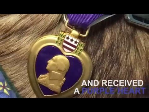 Sergeant Rocky's  Purple Heart