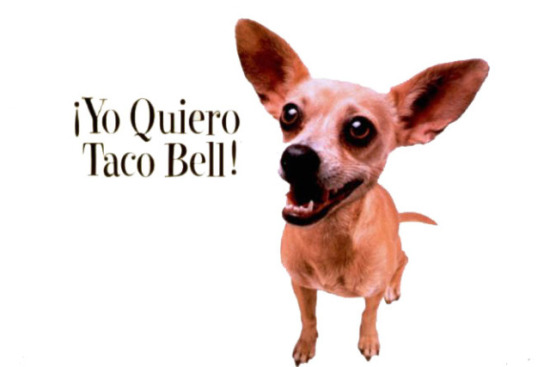 Gidget, the former mascot for Taco Bell, passed away 7/22/09 at age 15.