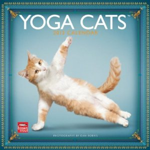 10 Hilarious Cat Calendars For The New Year Petslady Com