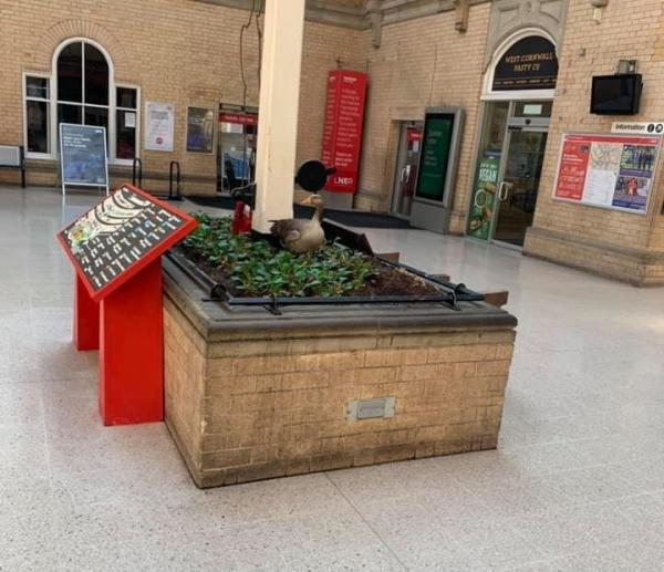 Un-Trained Goose Goes Off The Rails, Lays Egg In Station Planter