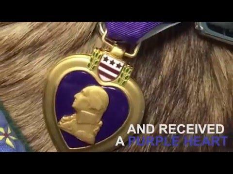 Sergeant Rocky's  Purple Heart