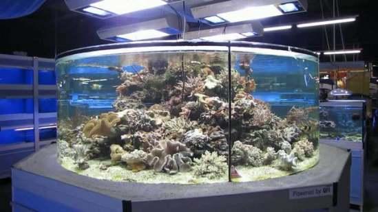 Aquarium at Zoo Zajac