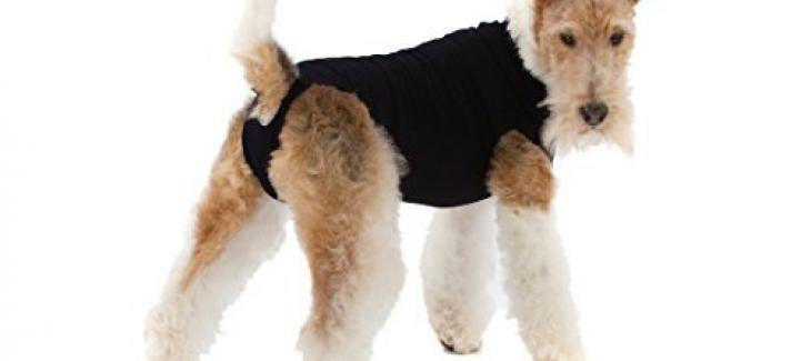 Suitical Recovery Suits For Dogs