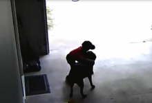 Boy Stealing Hugs from a Dog