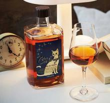 Cat At Night, The Brandy For Cat Owners, Will Leave You Feline Fine