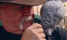 Love Thrives Between Veteran and Parrot