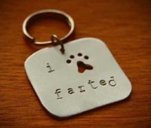Necked Up: The Top Ten Weird and Bizarre Pet Collar Tags