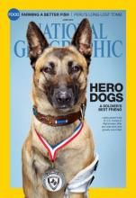 Layka on Cover of National Geographic