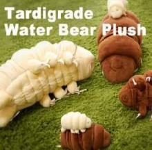 Tardigrade Plush Toy's Got Eight Legs To Cuddle You