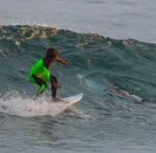 Kid Surfer Shredding Waves Nearly Shredded By Great White Shark