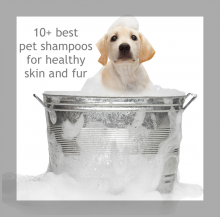 10+ products for the health of your pet's skin & fur