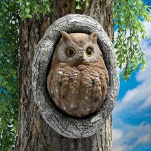 Knothole Owl Tree Sculpture