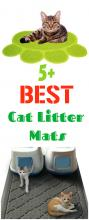 5 Best Cat Litter Mats You Can Buy