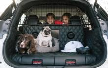 Nissan X-Trail 4Dog Concept Car