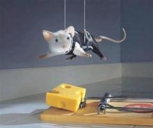 Mission Improbable Mouse