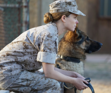 Top Dogs: K-9 & Marine Find Purpose On Battlefield