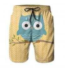 Owl On A Branch Board Shorts