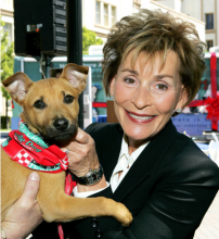 Judge Judy's Scales Of Justice Tip In Favor Pets