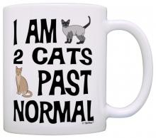 2 Cats Past Normal Mug