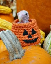 Halloween Bird Sweater