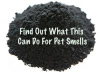 Activated charcoal is a great non-toxic air freshener