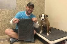 Scott Poore Gives A Bed To Homeless Dog