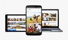 'Google Photos' App's Oppawtunity For Pet Photos & Mini-Movies