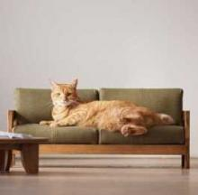 Artisanal Scaled-Down Cat Furniture Promotes Japanese City's Craftsmen