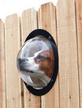 Pet Peek Windows sate a dog's natural curiosity
