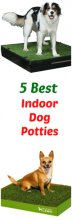 5 Best Indoor Dog Potties