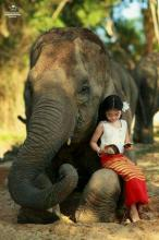 Reading With The Elephant
