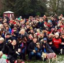 Christmas Jumper-Wearing Record Broken By Hundreds Of Dogs