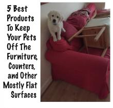 5 Best Pet Deterrents For Furniture & other flat surfaces