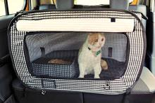 cat crates for vehicle travel