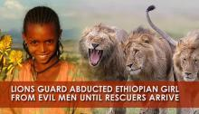 Girl With Lion Rescuers