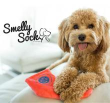 Smelly Socks dog toy