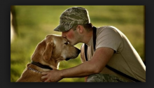 Dogs Suffer From PTSD Too!