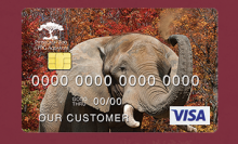 Stopping A Charging Elephant Without A Credit Card