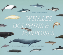 """Whale . . . Is There A Porpoise For Dolphins?"""