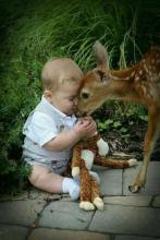 Baby and Fawn