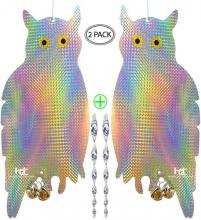 Homescape Creations Reflective Holographic Owls
