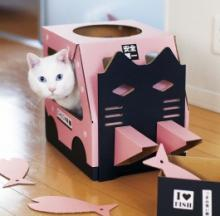 Forklift Cat House Puts Whiskers To Work