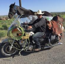 Cowboy's Horse Rides Shotgun In A Motorcycle Sidecar