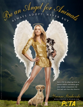 'Be An Angel For Animals' Starring Yvonne Strahovski