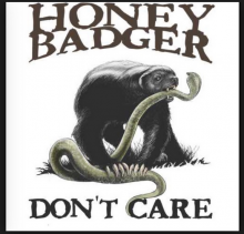 Honey Badger May Not Care That He Just Won A Trademark Battle