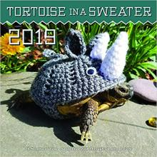 Tortoise in a Sweater Wall Calendar