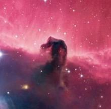 Amazing Outer Space Nebulae Named After Animals