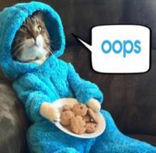 Cookie Monster Cat Featured In Bizarre U.S. Embassy Invitation Error