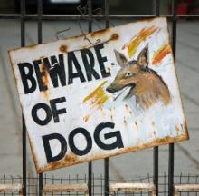 Mind The Pup: The Top 10 Bizarre 'Beware Of Dog' Signs